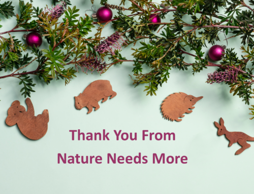 Christmas Thank You From NNM 2019