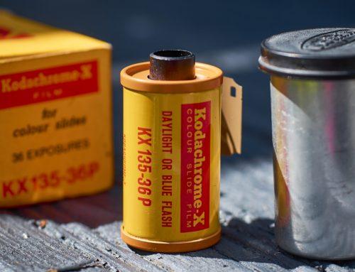 Will This Decade Bring CITES Signatories Their Kodak Moment?